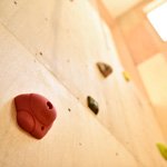 強い木の家 完成見学会「クライミングハウス」開催しました   11月26日-27日 [レポート]_イメージ画像